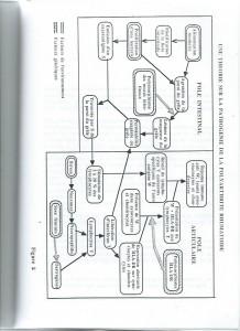 nutrition polyarthrite rhumatoide