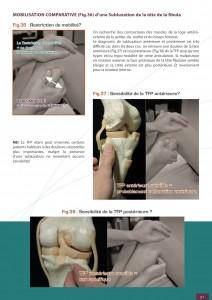 ostéopathie-traitement-genou