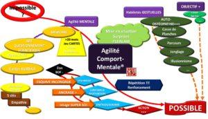 agilité mentale gestuelle bases