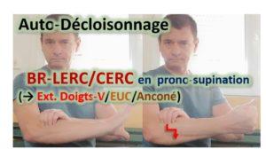 Auto-décloisonnage BR-LERC / CERC / EXTENSEURS DOIGTS – V /EXTENSEUR ULNAIRE CARPE / Anconé