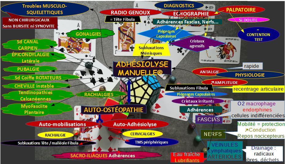 intérêts Adhésiolyse Manuelle et Auto-ostéopathie